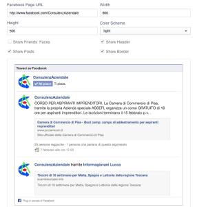 Pagina Facebook - Usa Like Box